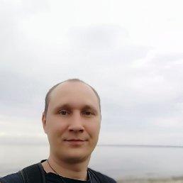 Дима, 37 лет, Тольятти