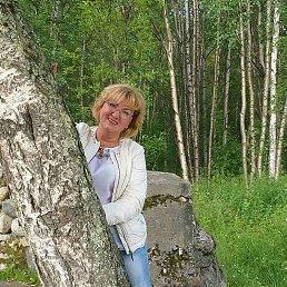 Лена, 53 года, Кола