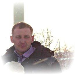 Евений, 41 год, Чистополь