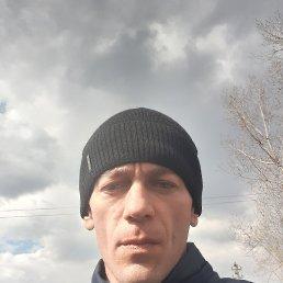 Володимир, 33 года, Васильков