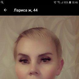 Лариса, 44 года, Нижнекамск