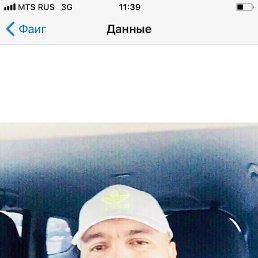 Андрей, 41 год, Астрахань
