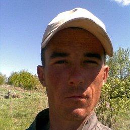 Александр, 37 лет, Новосибирск