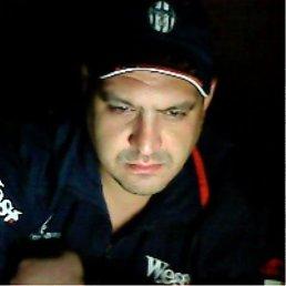 Алексей, 41 год, Дмитров
