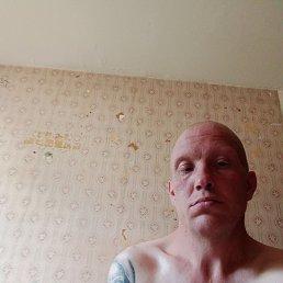 Анатолий, 36 лет, Снежинск