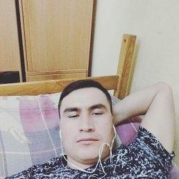 Babir, 32 года, Сергиев Посад-14