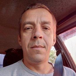 Дмитрий, 40 лет, Камень-на-Оби