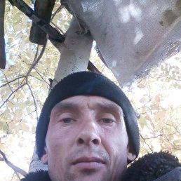 Виктор, 39 лет, Хабаровск