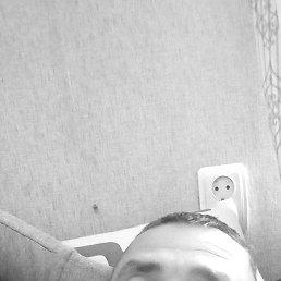 Виталий, 33 года, Ровно