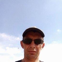 Андрей, 37 лет, Ульяновск