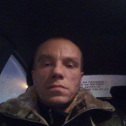 Максим, 39 лет, Новосибирск