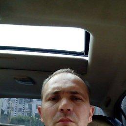 Артём, 37 лет, Ставрополь