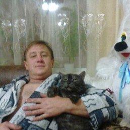 Антон, 41 год, Краснодар