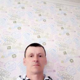 Андрей, 42 года, Новосибирск