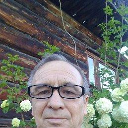 Володя, 63 года, Кыштым