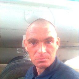 Дмитрий, Санкт-Петербург, 42 года
