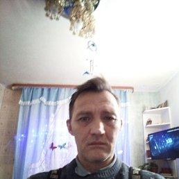 Андрей, 50 лет, Кировск