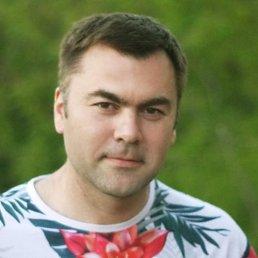 Александр, 41 год, Сочи