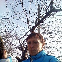 Татьяна, 35 лет, Краснодар