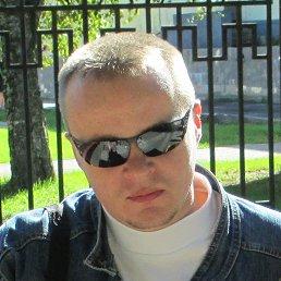 Михаил, 41 год, Кострома