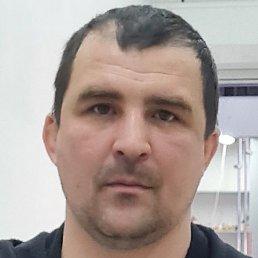 Игорь, Красноярск, 36 лет