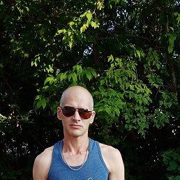 Андрей, 42 года, Егорьевск