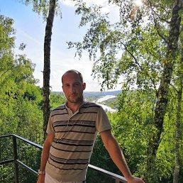 Сергей, Тула, 35 лет