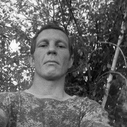 Владимир, 35 лет, Иркутск