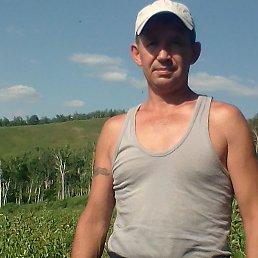 Дима, 43 года, Хабаровск