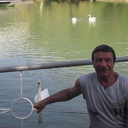 Александр, 65 лет, Ярославль