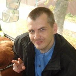 Олег, Ярославль, 30 лет