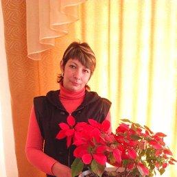 Алёна, 38 лет, Тула