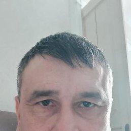 Вова, 33 года, Краснодар