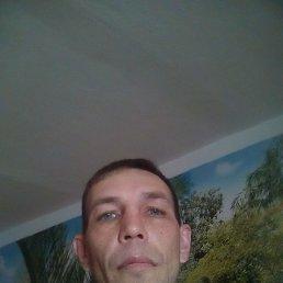 Сергей, 41 год, Прогресс