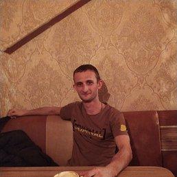 Алексей, Санкт-Петербург, 29 лет