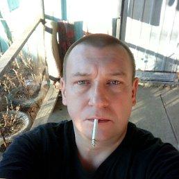 Андрей, 41 год, Холмская