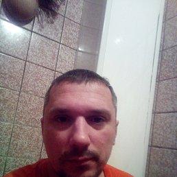алексей, 38 лет, Курск