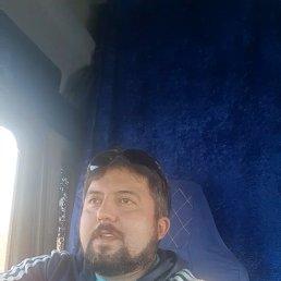 Игорь, , Белгород
