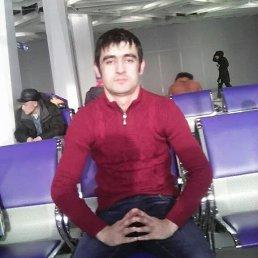 Алий, 31 год, Красноярск