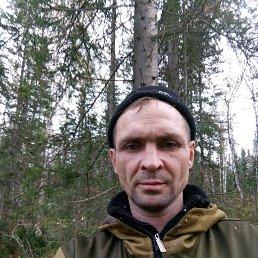 Максим, 37 лет, Новокузнецк