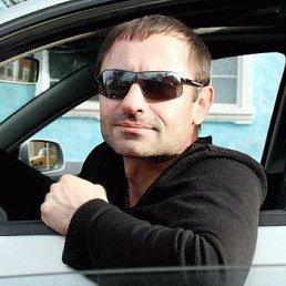 Геннадий, 36 лет, Волгоград