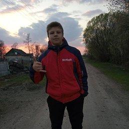 Александр, 18 лет, Житомир