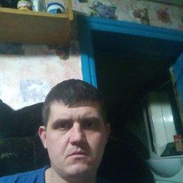 Николай, 37 лет, Зверево