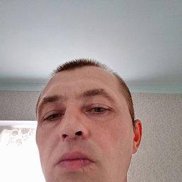 Андрей, 38 лет, Краснодар