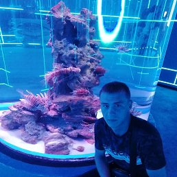 Дмитрий, 25 лет, Кемерово