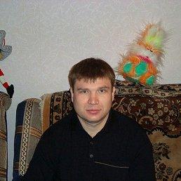 Сергей, 42 года, Белгород