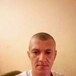 Алексей, 37 лет, Запорожье