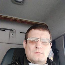 Александр, 41 год, Магадан