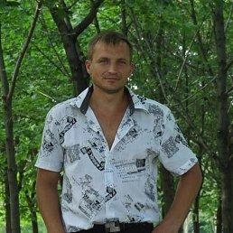 Евгений, 34 года, Бийск