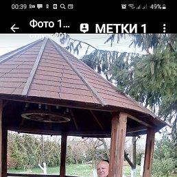 Леонид, 64 года, Челябинск